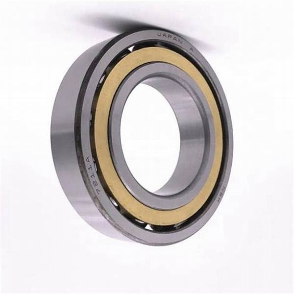 SKF Deep Groove Ball Bearing 6200 6201 6202 6203 6204 6205 6206 6207 6208 6209 Zz 2RS